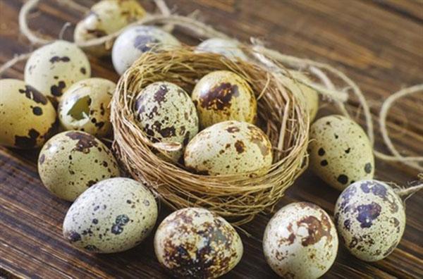 15 tác dụng chữa bệnh thần kỳ trứng chim cút